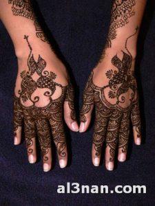 -حناء-هندي-بالصور_00139-225x300 نقش حناء هندي بالصور