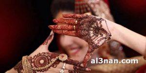 اجدد-صور-نقش-حناءاعم-للعروس_00001-300x150 اجدد صور نقش حناء ناعم للعروس