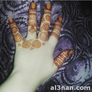 حناء-صحراوية-خفيفة_00086-300x300 حناء صحراوية خفيفة