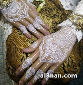 -احدث-حناء-انستقرام-خفيف-للعروس_00036-293x300 صور احدث حناء انستقرام خفيف للعروس