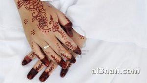 صور-احدث-نقشات-حناء-بسيطه-للعروس_00047-300x169 صور احدث نقشات حناء بيسطة للعروس