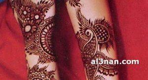 -احدث-نقش-حناء-هندي-واماراتي-للعروس_00079-300x163 صور احدث نقش حناء هندي و اماراتي