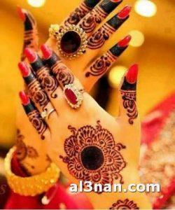 صور-احدث-نقوش-حنه-ناعمه-للعروس_00084-250x300 صور احدث نقوش حنه ناعمه للعروس