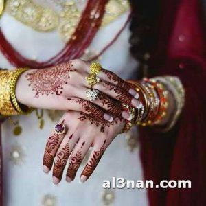 صور-احدث-نقوش-حنه-ناعمه-للعروس_00090-300x300 صور احدث نقوش حنه ناعمه للعروس