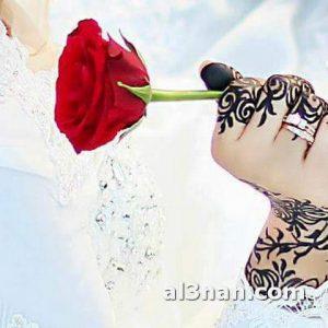صور-احلا-حنة-سودانية-بالنشادر_00053-300x300 بالصور حنة نشادر جديدة