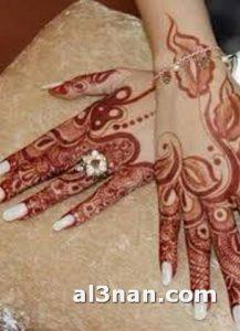 -نقش-حناء-روعه-للعروس_00090-217x300 صور نقش حناء روعة للعروس